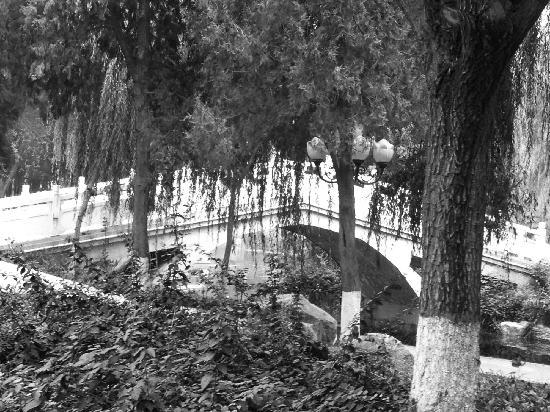 Luanchuan County, China: 垂柳中隐约朦胧的石桥。