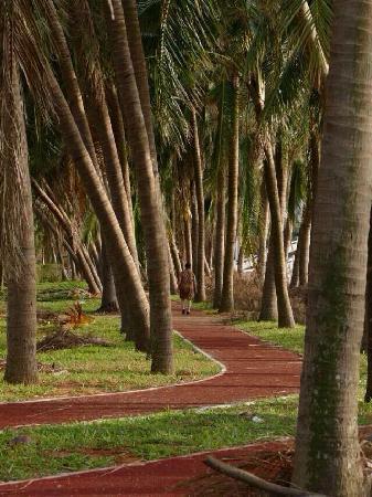 Wanlv Park: 漂亮