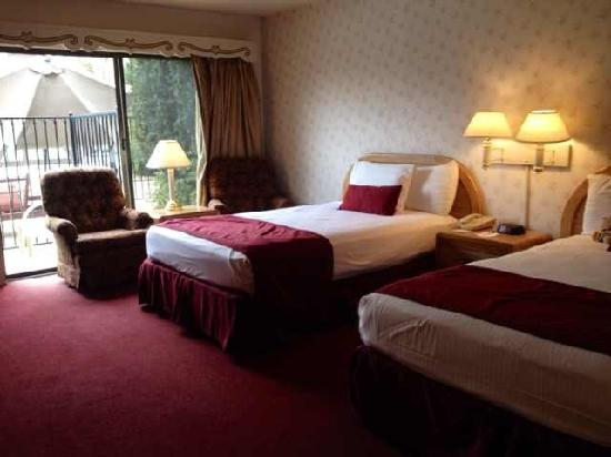 Svendsgaard's Lodge - Americas Best Value Inn: 欧式风格的酒店
