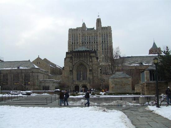 耶鲁大学图书馆 ニュー ヘブン yale universityの写真 トリップ