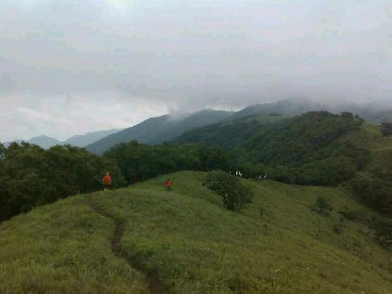 Yanqing Haituo Mountain: 山顶草垫