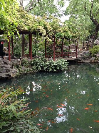 The Lingering Garden: 最美留园