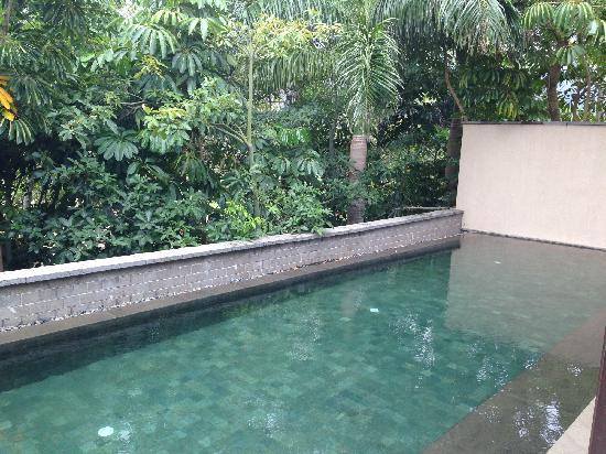 Narada Resort & Spa  Perfume Bay: 私家泳池
