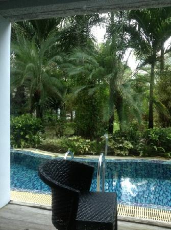 B-Lay Tong Phuket: 房间外阳台就有泳池