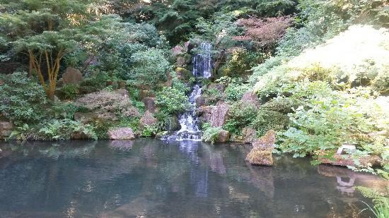 Portland Japanese Garden: 有如仙境
