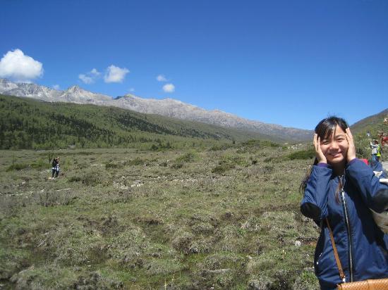 Tagong Grassland: 典型的高山草原风景