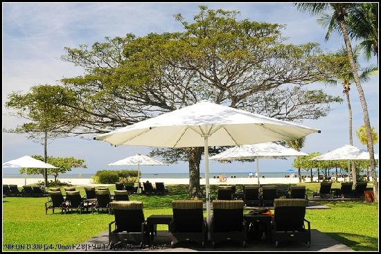 Shangri-La's Rasa Ria Resort & Spa: 草坪