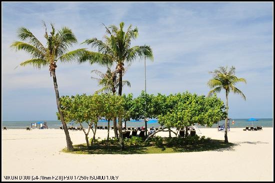 Shangri-La's Rasa Ria Resort & Spa: 沙滩