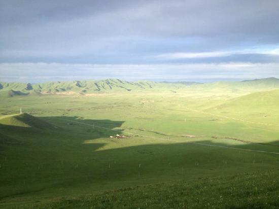 Zoige County, China: 日落的草原