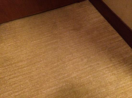 Grand Mercure Beijing Central : 污渍不堪的地毯