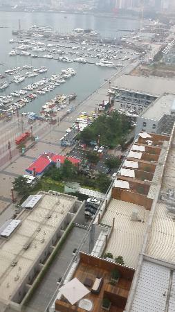 InterContinental Hotel Qingdao: 俯瞰户外区域