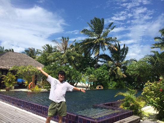 Naladhu Private Island Maldives: 泳池