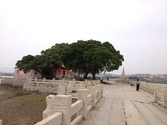 Luoyang Bridge: 洛阳桥