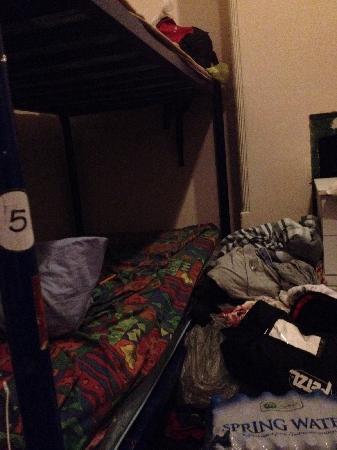 Planet Inn Backpackers : 上下床
