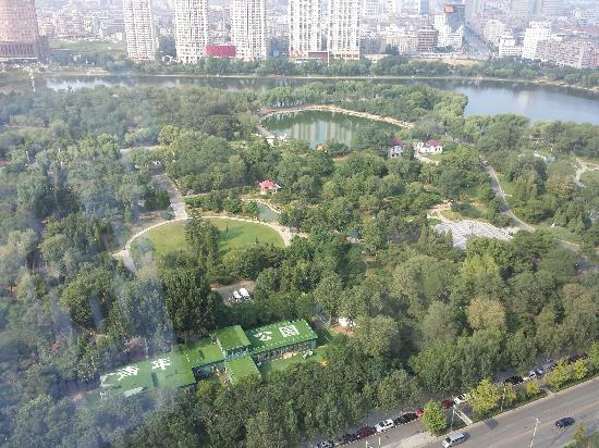 Shenyang Youth Park: 俯视公园