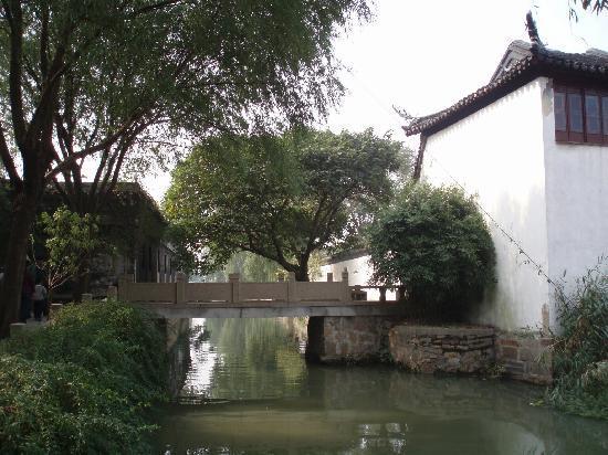 Suzhou Plum Garden: 精致的梅园
