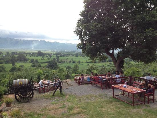 Red Mountain Estate Vineyards & Winery: 美景