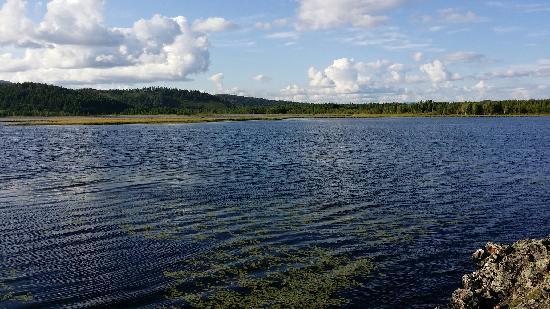 兴安杜鹃湖