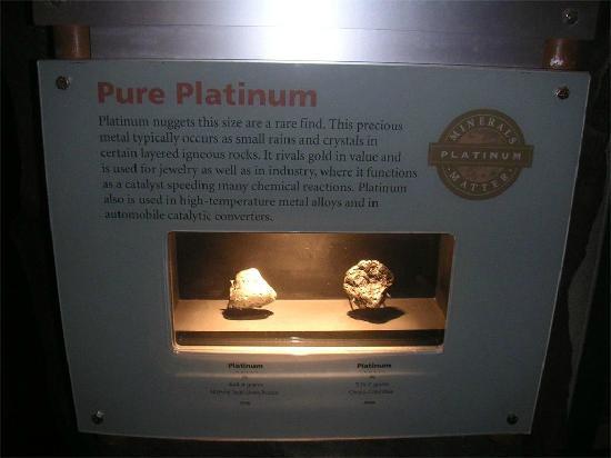 Museo Nacional Smithsonian de Historia Natural: 博物馆藏品