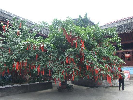 Liujiang Ancient Town: 古镇里的院落
