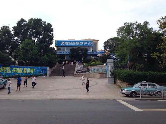 Qingdao Underwater World: 海底世界