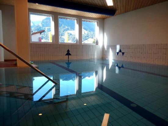 Hostellerie am Schwarzsee: 泳池一角,喜欢这个山