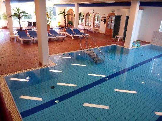 Hostellerie am Schwarzsee: 泳池另外一角