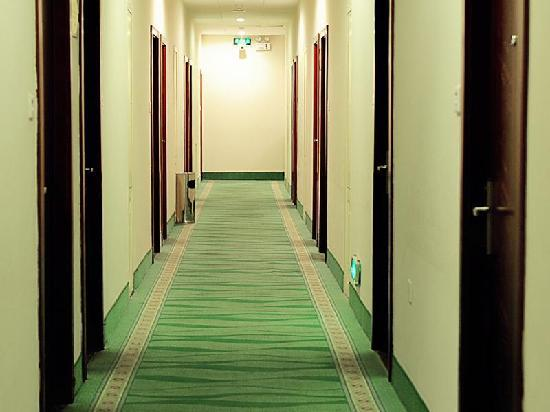 Green Tree Inn Nanjing Xinjiekou Taiping South Road Express Hotel: 走廊