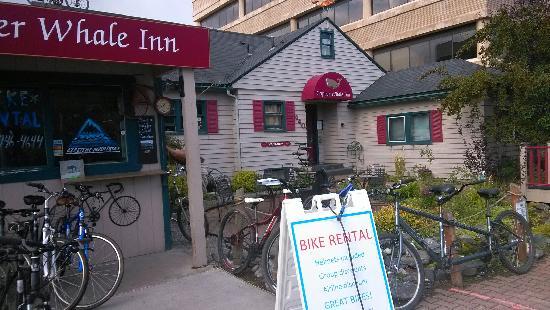 Copper Whale Inn : 旅馆外景,还有租自行车