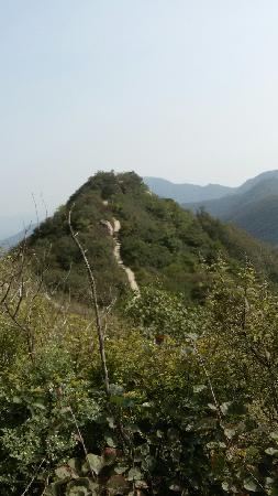 河南禹州市: 蜿延山路