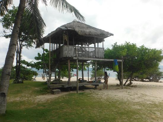 Banana Island: 海岛