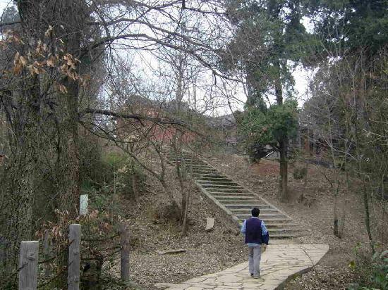XiDao YiZhan