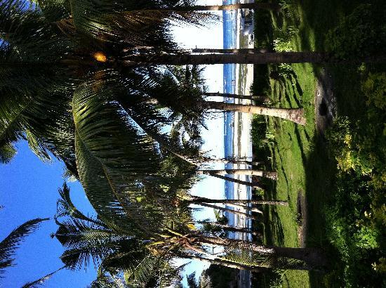 Bulabog Beach: 适合娱乐的海滩