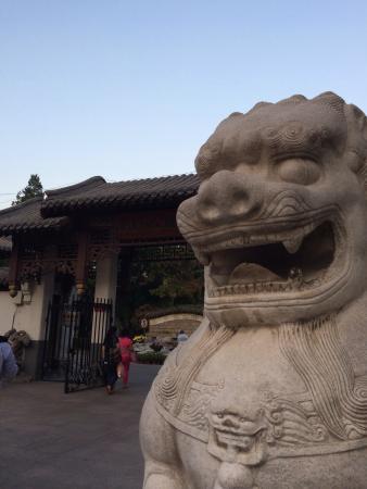 Tuanjiehu Park : 公园大狮子