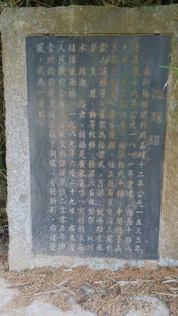 Fengkai County, China: 泰新桥简介