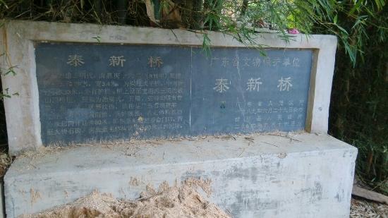 Fengkai County, Cina: 泰新桥简介