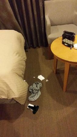 Songdo Bridge Hotel: 垃圾就在旁边