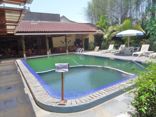 Mutiara Hotel: 泳池