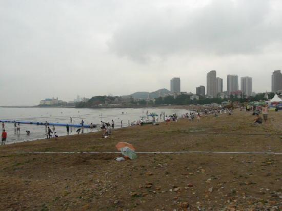 Tiger Beach : 海边