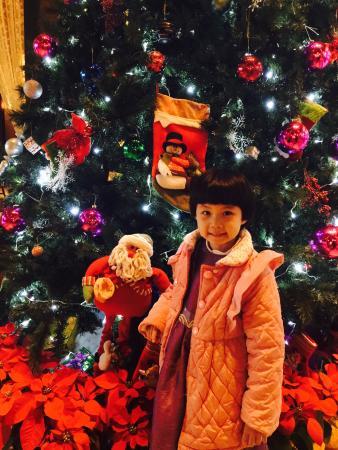 InterContinental Huizhou Resort: 大堂的圣诞树,挺漂亮的