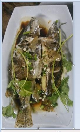 Shitai County, Chiny: 清蒸鳜鱼   秋浦河最好的鱼  老板说我有口福哈哈  很难搞到这么大的鳜鱼