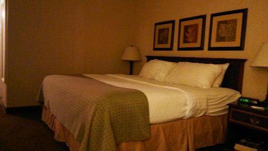 Holiday Inn Express Buffalo Airport: 标准的大床房