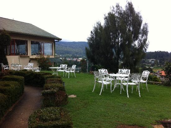 Tea Bush Hotel : Tea Bush