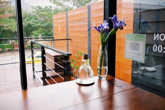 Apple Room Hostel : 窗台,绿植
