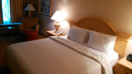 Hilton Garden Inn Mountain View: 不错的大床房
