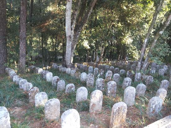 Anti-Japanese Memorial Park: 抗日国殇园