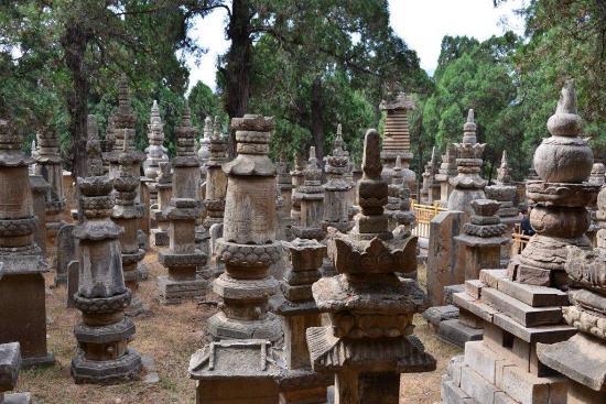 Lingyan Temple Scenic Resort : 墓塔林