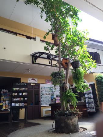 Lanna Boutique Resort: 酒店大堂
