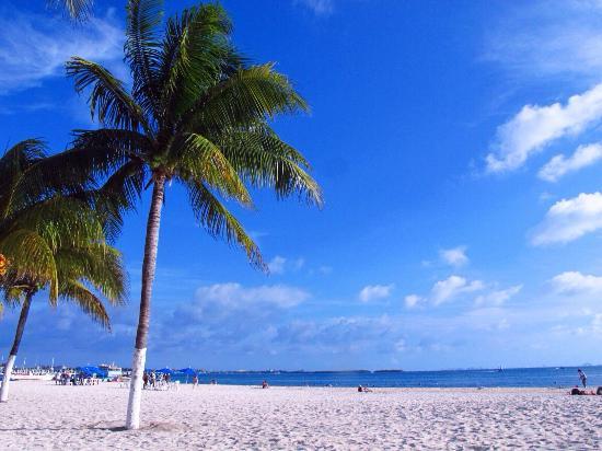 Hostel Mundo Joven Cancun: 去女人島很方便