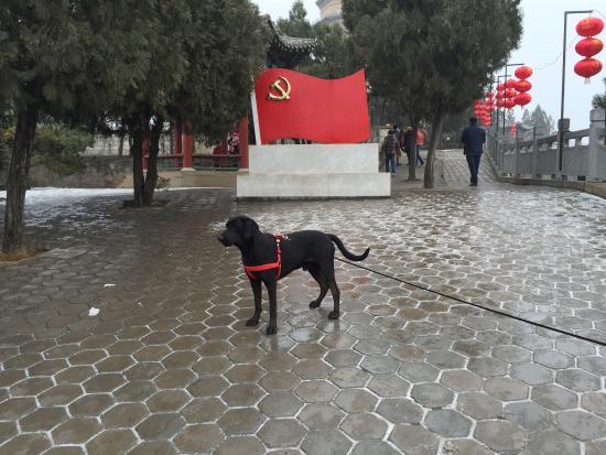 Baota shan: 景区里的党旗